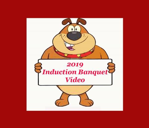 2019videoicon
