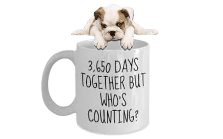 whosecounting3